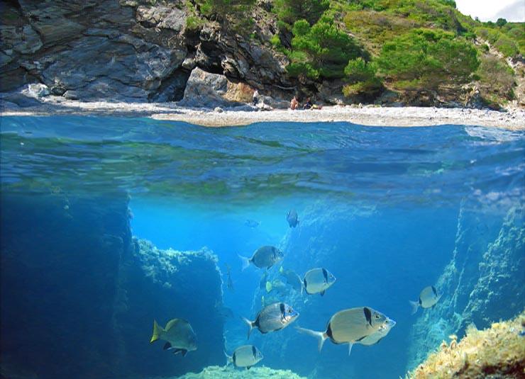 Corse: camping, location, vacances, hotel et tourisme en Corse